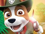 Щенячий патруль спасение в джунглях