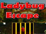 Побег Леди Баг