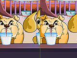 Отличия собак