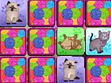 Коты на память