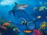 Подводная рыба: скрытые буквы