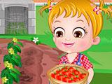 Хейзел выращивает помидоры