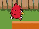 Злые птички голодный бег