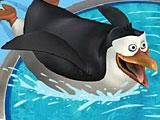 Пингвины ловят рыбу
