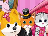 Салон для кошек и собак
