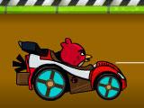 Злые птицы гонки
