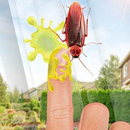 Давить жуков
