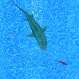 Акулы.ио