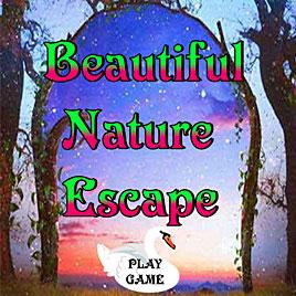 Побег От Красивой Природы