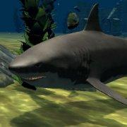 Игра Игра Белая акула