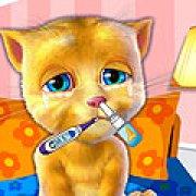 Игра Игра День рождения говорящего кота Рыжика / Talking Ginger Birthday