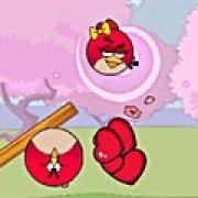 Игра Игра Angry Bird: найдите жену