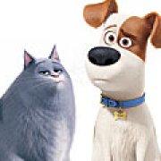 Игра Игра Тайная жизнь домашних животных: создать