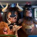 Игра Игра Фердинанд: скрытые быки