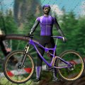 Игра Игра Гонки на Велосипедах 3Д