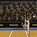 Игра Игра Волейбол олимпийских кроликов