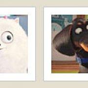 Игра Игра Тайная жизнь домашних животных мультик