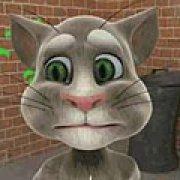 Игра Игра Говорящий кот