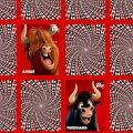 Игра Игра Фердинанд: тренировка памяти на картах