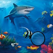 Игра Игра Подводная рыба: скрытые буквы