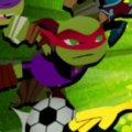 Игра Игра Черепашки Ниндзя: Звёзды Футбола