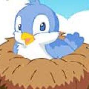 Игра Игра Найди птичку