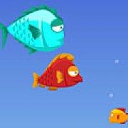 Игра Игра Рыба ест рыбу
