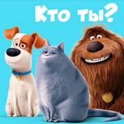 Игра Игра Тест: Кто Ты из Тайная Жизнь Домашних Животных?