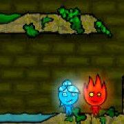 Игра Игра Огонь и Вода в лесном храме