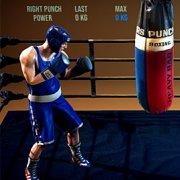 Игра Игра Бокс На Двоих: Панчеры