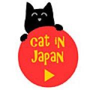 Игра Игра Кот в Японии