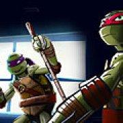 Игра Игра Черепашки ниндзя: герои в тени