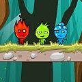 Игра Игра На троих Огонь и Вода джунгли Амазонки