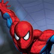 Игра Игра Человек паук воин