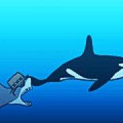 Игра Игра Акула Сиднея