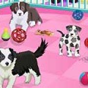 Игра Игра Уход за любимыми щенками