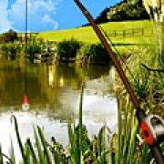 Игра Игра Поездка на рыбалку