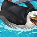 Игра Игра Пингвины ловят рыбу