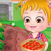 Игра Игра Хейзел выращивает помидоры