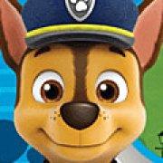 Игра Игра Безопасность щенячьего патруля