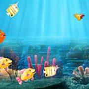 Игра Игра Соответствия рыб