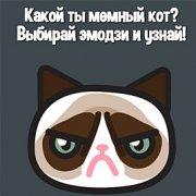 Игра Игра Какой ты мемный кот?
